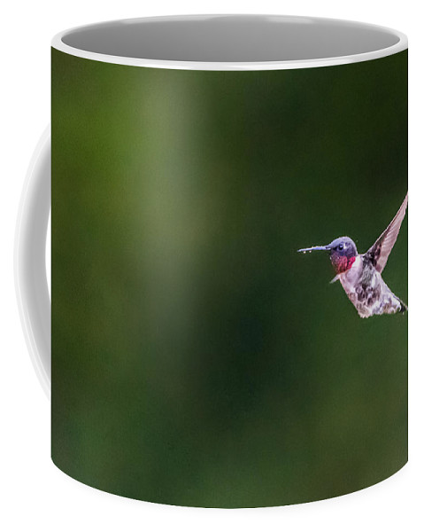 Bird Coffee Mug featuring the photograph A Little Something On The Chin by Steven Santamour