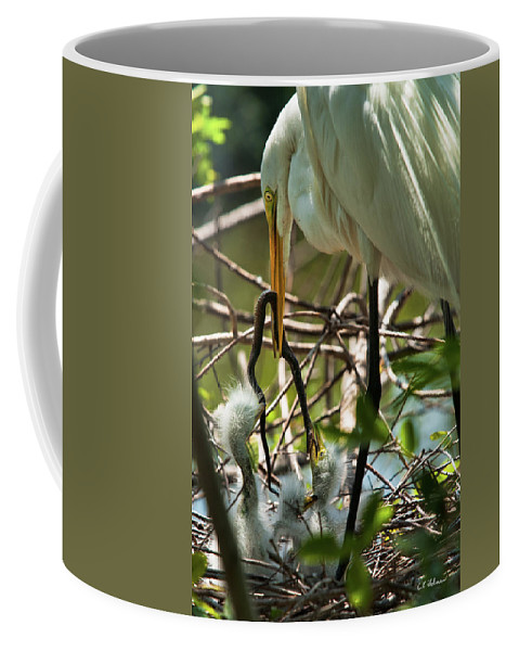 Birds Coffee Mug featuring the photograph A Lively Lunch by Christopher Holmes