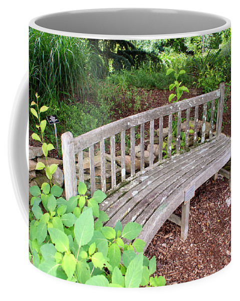 Bench Coffee Mug featuring the photograph A Nice Sit 2 by Jean Haynes
