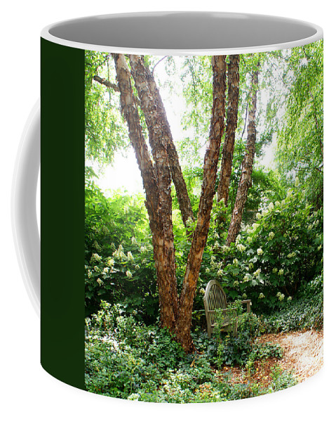 Bench Coffee Mug featuring the photograph A Nice Sit 5 by Jean Haynes