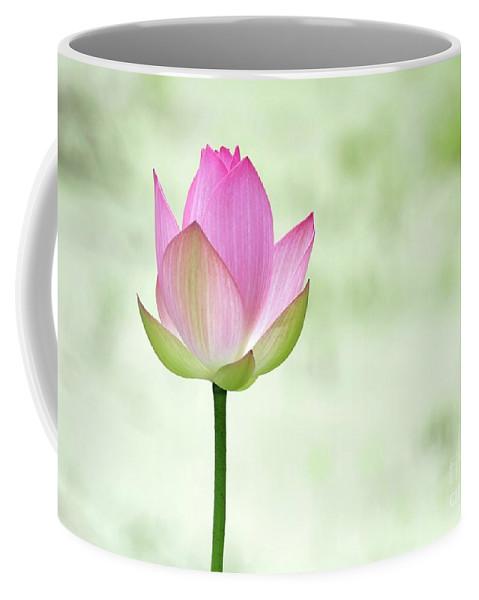 Lotus Coffee Mug featuring the photograph A Pink Lotus by Sabrina L Ryan