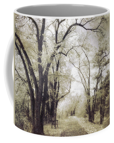 Path Coffee Mug featuring the photograph A Place For Dreams To Stay Forever by Tara Turner
