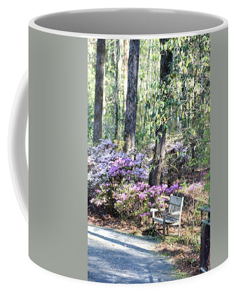 Gardens Coffee Mug featuring the photograph A Place To Rest by Gayle Miller