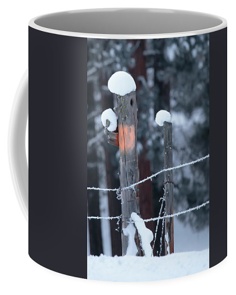 Fence Coffee Mug featuring the photograph A Post It Note by Diana Marcoux