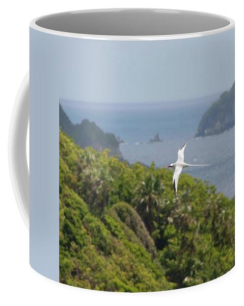 Tropicbird Coffee Mug featuring the photograph A Red-billed Tropicbird (phaethon by John Edwards