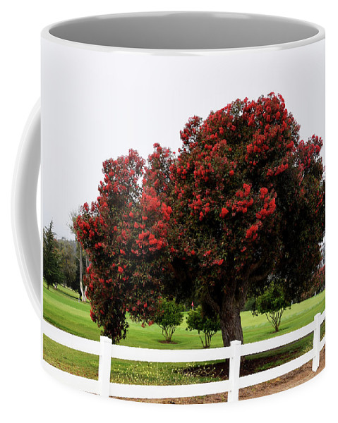 Barbara Snyder Coffee Mug featuring the photograph A Red Pin Under A Red Tree At Morro Bay Golf Course by Barbara Snyder