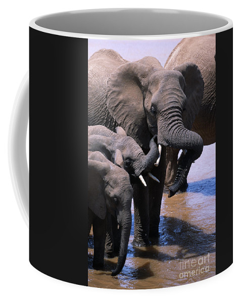 Africa Coffee Mug featuring the photograph A Refreshing Moment by Sandra Bronstein