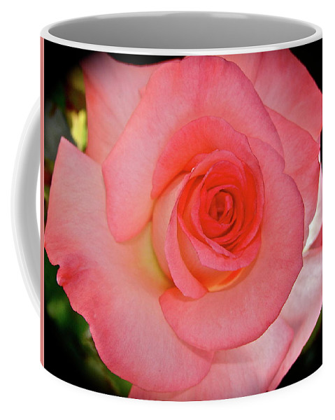 Rose Coffee Mug featuring the photograph A Rose For Mary by Diana Hatcher
