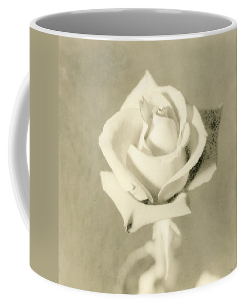 Rose Coffee Mug featuring the photograph A Rose Of Alternate Processed by John Harmon