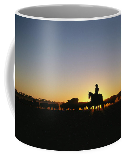 Australia Coffee Mug featuring the photograph A Silhouetted Australian Cattle Rancher by Medford Taylor