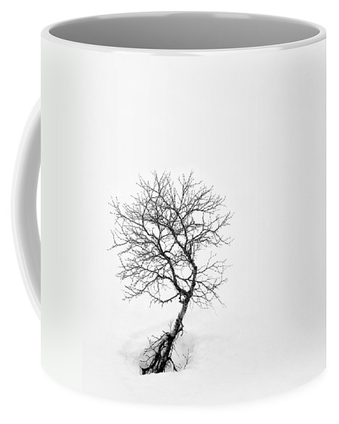 One Tree Coffee Mug featuring the photograph A Simple Tree by Dave Bowman