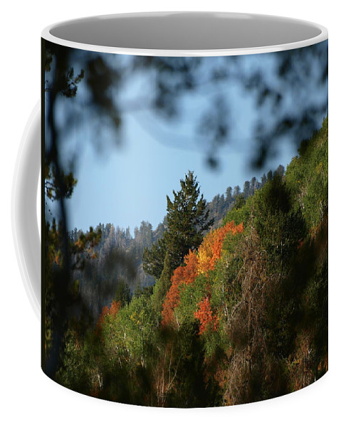 Fall Coffee Mug featuring the photograph A Spot Of Fall by DeeLon Merritt