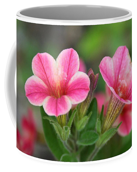 Flowers Coffee Mug featuring the photograph A Sunny Afternoon by Linda Sannuti