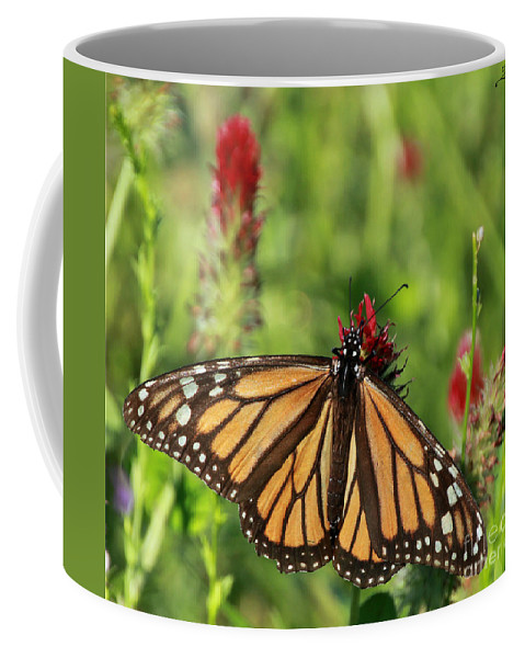 Monarch Coffee Mug featuring the photograph A Taste Of Clover by Rebecca Morgan