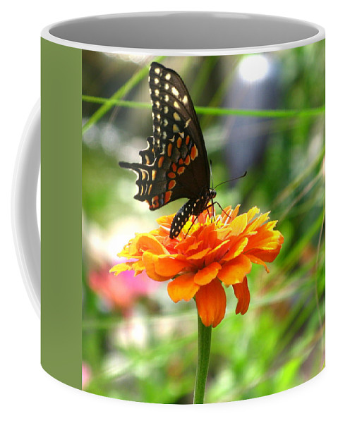 Summer Coffee Mug featuring the photograph A Touch Of Summer's End by Brittany Horton