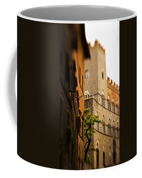 Italy Coffee Mug featuring the photograph A Tree Grows by Marilyn Hunt
