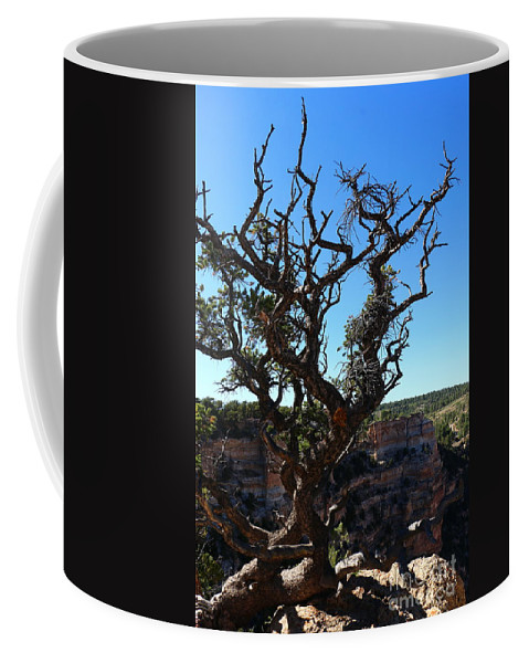 Cape Final Coffee Mug featuring the photograph A Tree On The Edge by Christiane Schulze Art And Photography