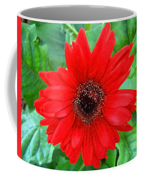 Flower Coffee Mug featuring the photograph A True Red by Sandi OReilly