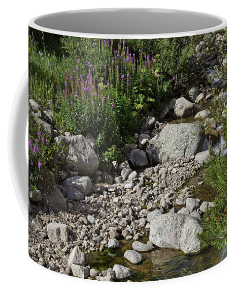 Stream Coffee Mug featuring the photograph A Vail Stream by Madeline Ellis