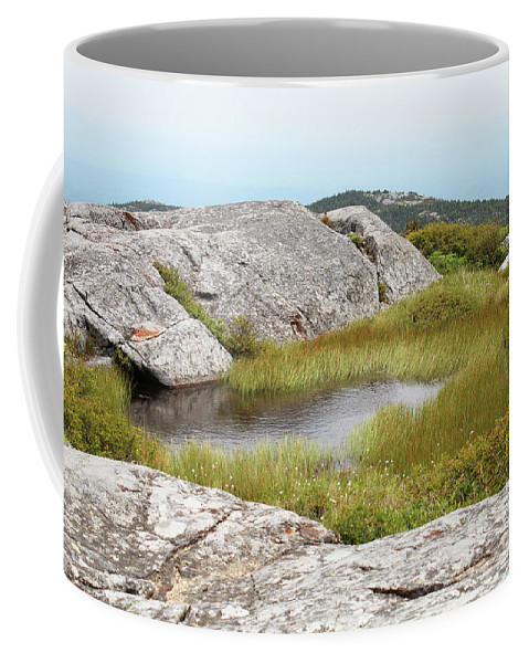 Vernal Coffee Mug featuring the photograph A Vernal Pool Atop A Subalpine Granite Balds by Maili Page