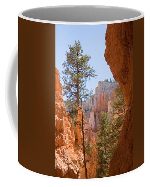 Canyons Coffee Mug featuring the photograph A View Of The Hoodoos And Erosion by Taylor S. Kennedy