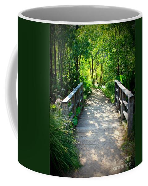 Garden Path Coffee Mug featuring the photograph A Walk In The Park by Carol Groenen