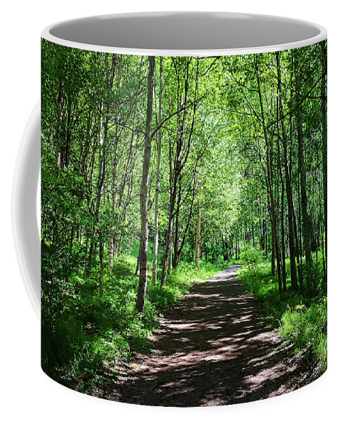 Trees Coffee Mug featuring the photograph A Walk In The Woods by Amber D Meredith Photography