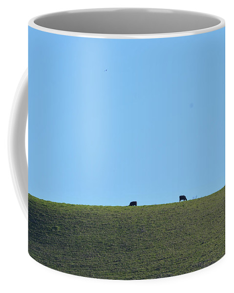 Cow Coffee Mug featuring the photograph A Whole Lot Of Nothing by Miranda Strapason