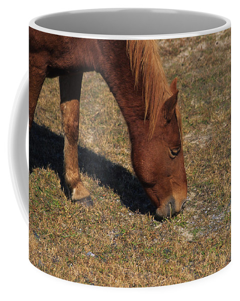 Assateague Coffee Mug featuring the photograph A Wild Pony In Assateague by Stacy Gold