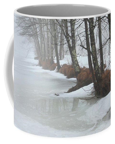 Winter Coffee Mug featuring the photograph A Winter's Scene by Karol Livote