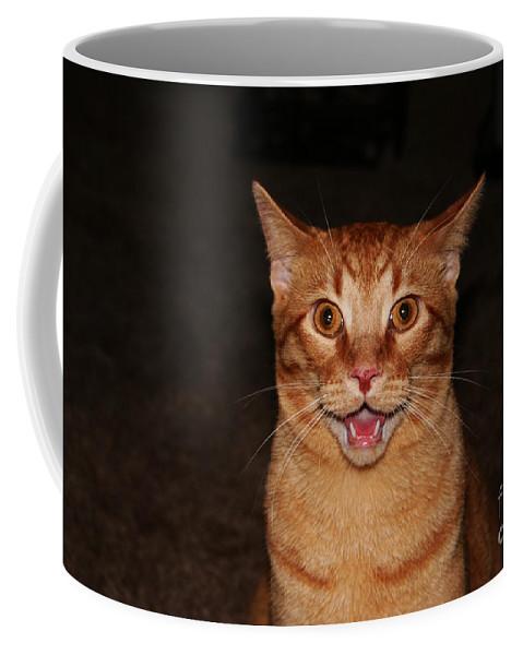 Buddy Coffee Mug featuring the photograph Aaaaaahhhhhhhhhh by Jamie Lynn