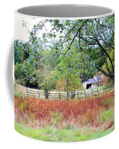 Flowers Coffee Mug featuring the photograph Abandoned by Deborah Crew-Johnson