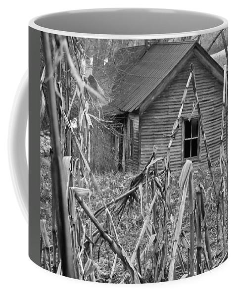 Abandoned Coffee Mug featuring the photograph Abandoned Farmhouse Through Cornfield by Douglas Barnett