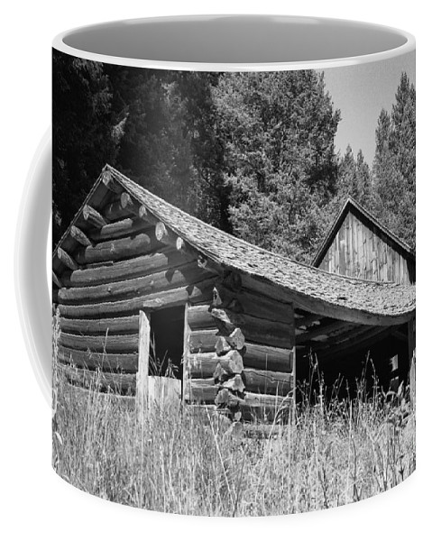 Cabin Coffee Mug featuring the photograph Abandoned Homestead by Richard Rizzo