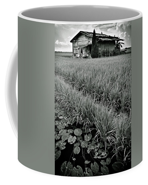 House Coffee Mug featuring the photograph Abandoned House by Dave Bowman