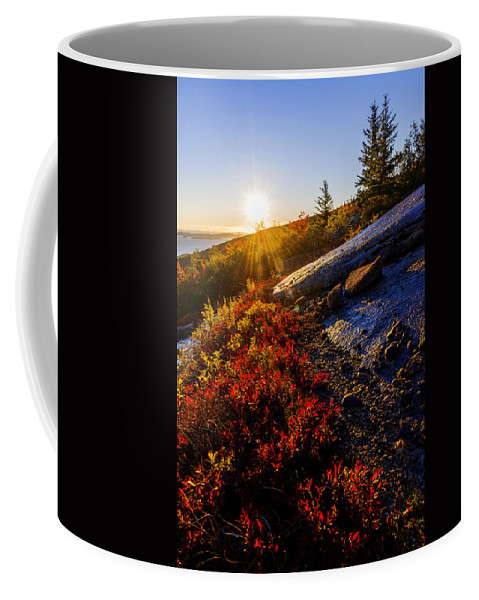 Above Bar Harbor Coffee Mug featuring the photograph Above Bar Harbor by Chad Dutson