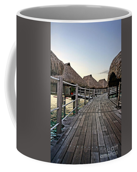 Water Coffee Mug featuring the photograph Above The Water by Ivana Kovacic