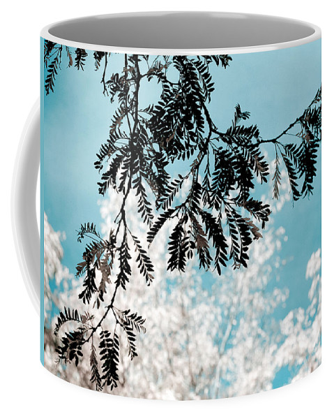 Tree Coffee Mug featuring the photograph Abstract Locust by Marilyn Hunt