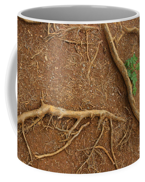 Roots Coffee Mug featuring the photograph Abstract Roots by Mary Mikawoz