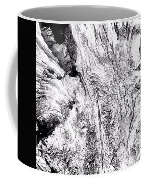 Nature Coffee Mug featuring the photograph Abstraction Of Nature No. 4 by Troy Hixson