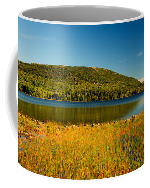 Acadia Coffee Mug featuring the photograph Acadia, National Park Shoreline And Marsh Maine by Douglas Barnett