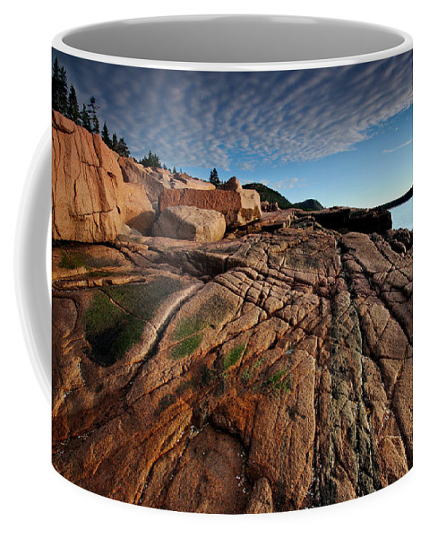 Acadia Coffee Mug featuring the photograph Acadia Rocks by Neil Shapiro