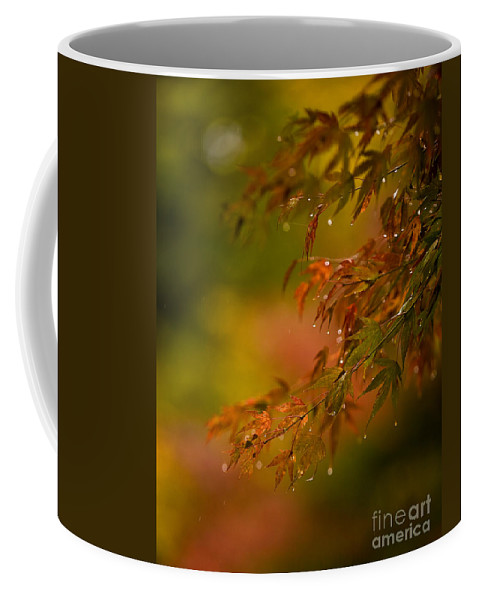 Acer Coffee Mug featuring the photograph Acer Jewels by Mike Reid