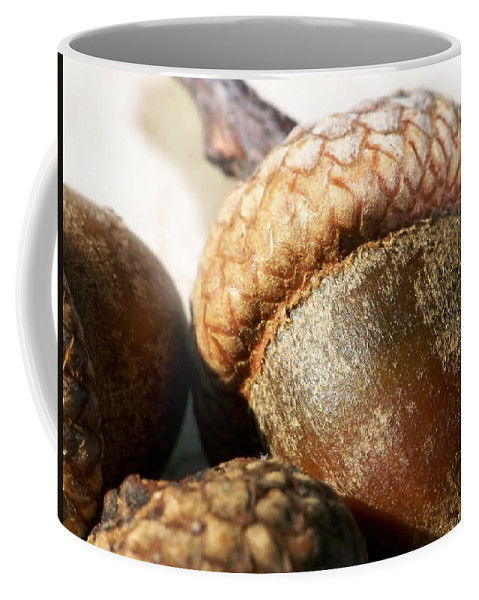 Macro Coffee Mug featuring the photograph Acorns by Lauren Radke
