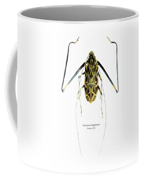 Nature Coffee Mug featuring the digital art Acrocinus II by Geronimo Martin Alonso