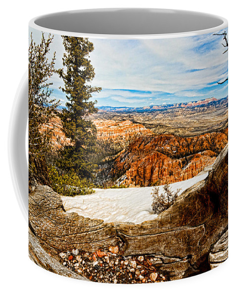 Art Coffee Mug featuring the photograph Across The Canyon by Christopher Holmes