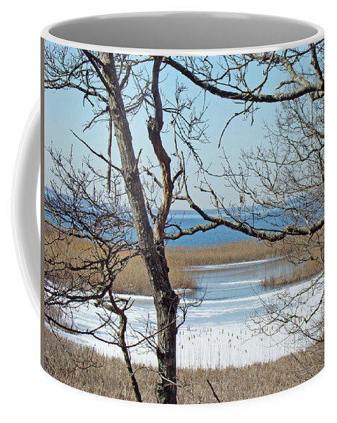 Beach Coffee Mug featuring the photograph Across The Marsh To Woodneck Beach - Cape Cod by Mother Nature