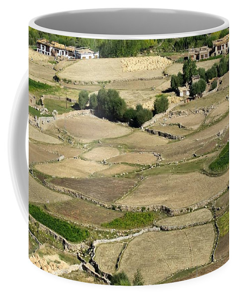 Landscape Coffee Mug featuring the photograph Aerial View Of Green Ladakh Agricultural Landscape by Rudra Narayan Mitra
