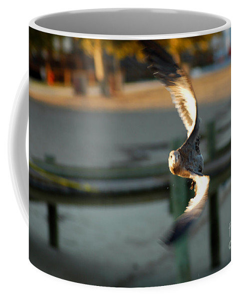 Clay Coffee Mug featuring the photograph Aeronautical Acrobatics by Clayton Bruster