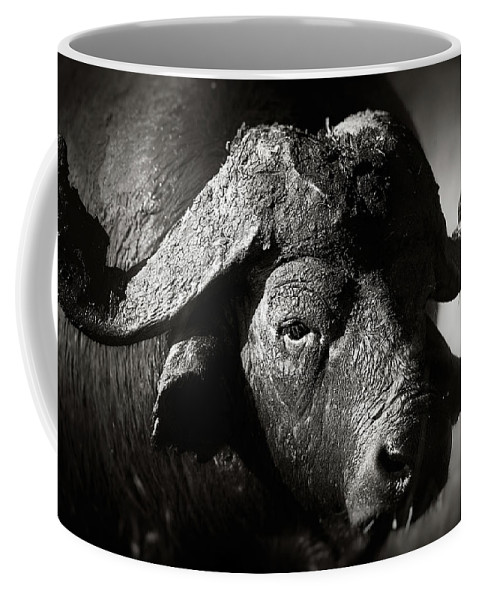 Buffalo Coffee Mug featuring the photograph African Buffalo Bull Close-up by Johan Swanepoel